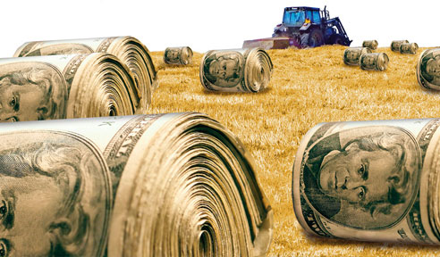 how to get farm subsidies
