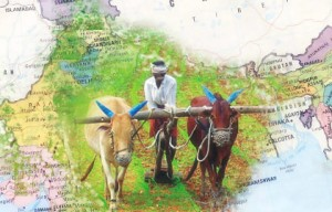 indian-agriculture-sector