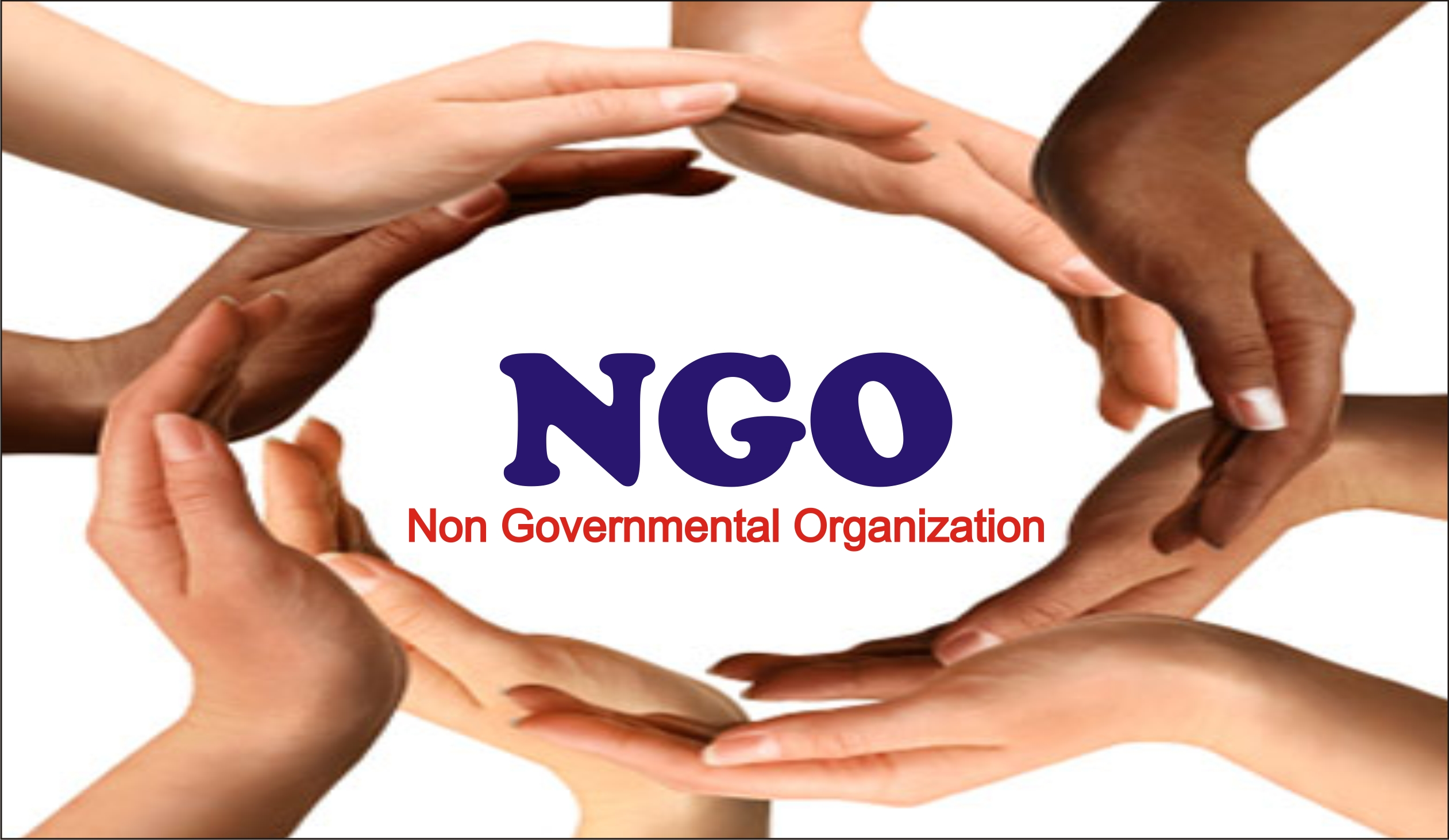 NGOs and the larger picture of Indian democracy ...